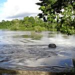 Suriname - Jaw Jaw - blik op de rivier bij hoog water