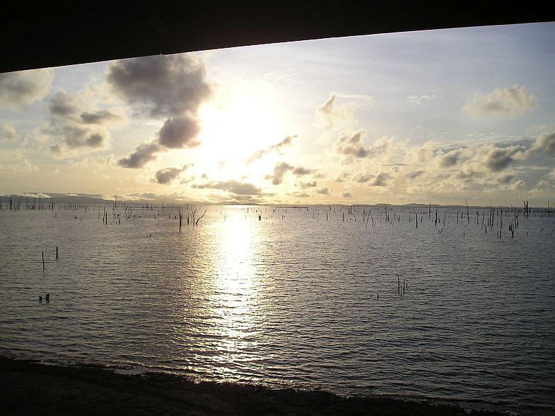 Uitzicht op Brokopondomeer 's morgens