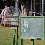 Paramaribo - Vogelzang - Uitslag