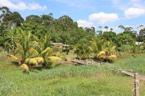Paramaribo - Leiding16