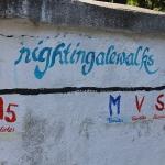 Samos - Nigthingalewalks