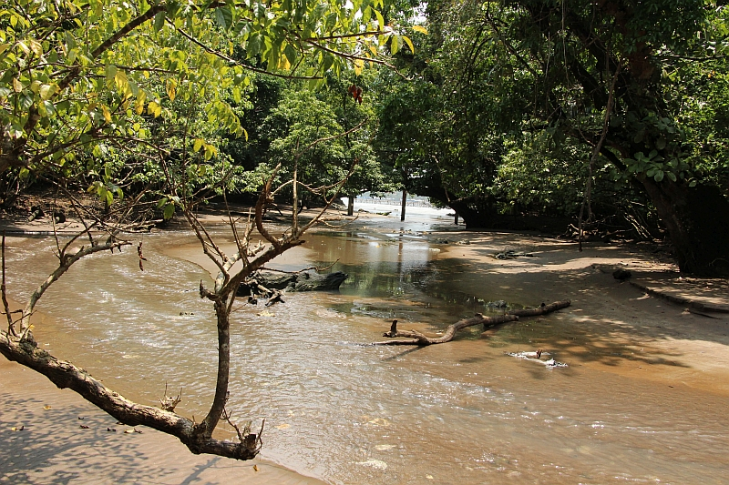 Pangandaran - Jungletocht