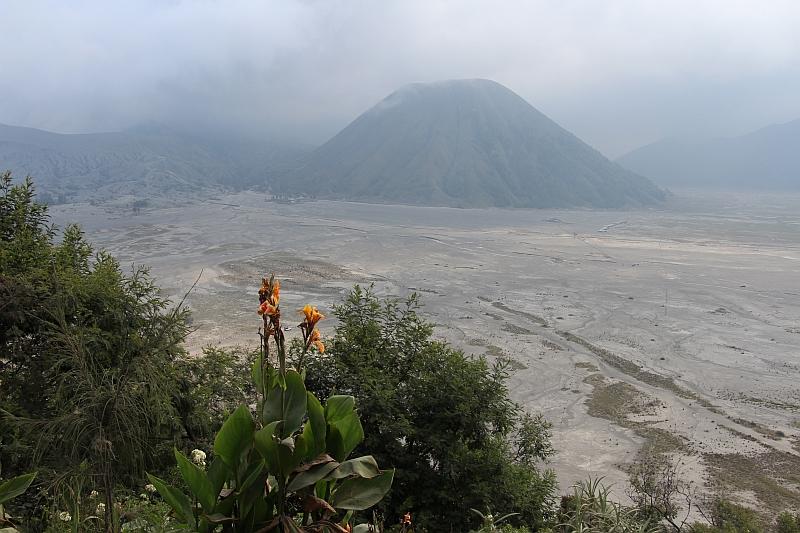 Uitzicht op Bromo vulkaan in de Caldeira