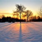 Sneeuw in Groesbeek (foto: Piet Spanjers)