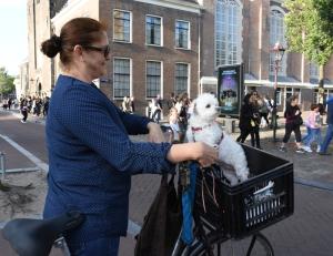 Vrouw met hondje bij de Westertoren